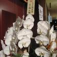 パーティを飾った花⑮/「D2C」10周年