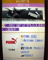 Pumamixi2_2